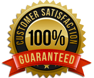 Web Spanish guarantees your satisfaction with your online Spanish course.